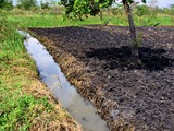 draining_water_fertilizes_agriculture_grounds
